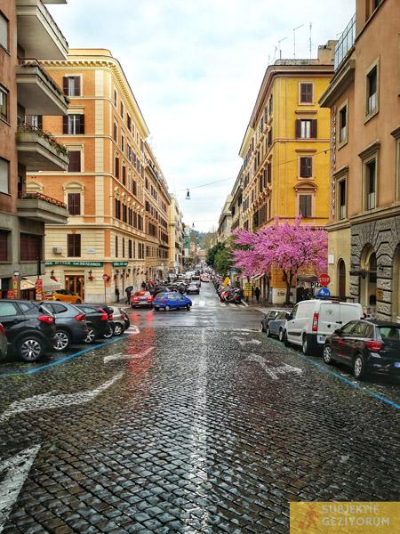 vatikan-bolgesi-sokaklari