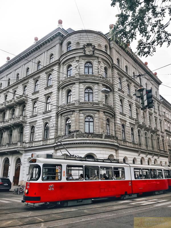 viyana-sehir-tramvay
