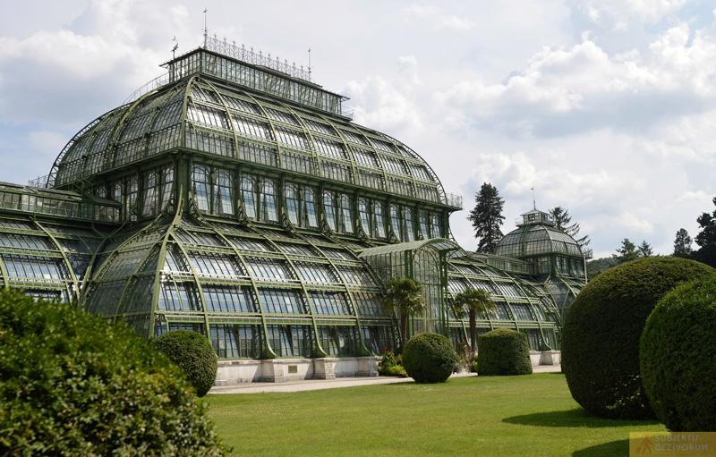 palmenhaus-schonbrunn-sarayi-bahce
